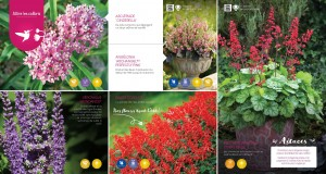 Brochure inspiration 2017_Page_14