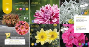 Brochure inspiration 2017_Page_15