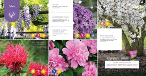 Brochure inspiration 2017_Page_16